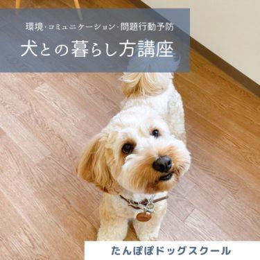 犬との暮らし方講座 問題行動編